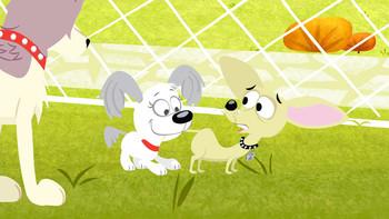 Episodio 3 (TTemporada 1) de Pound Puppies
