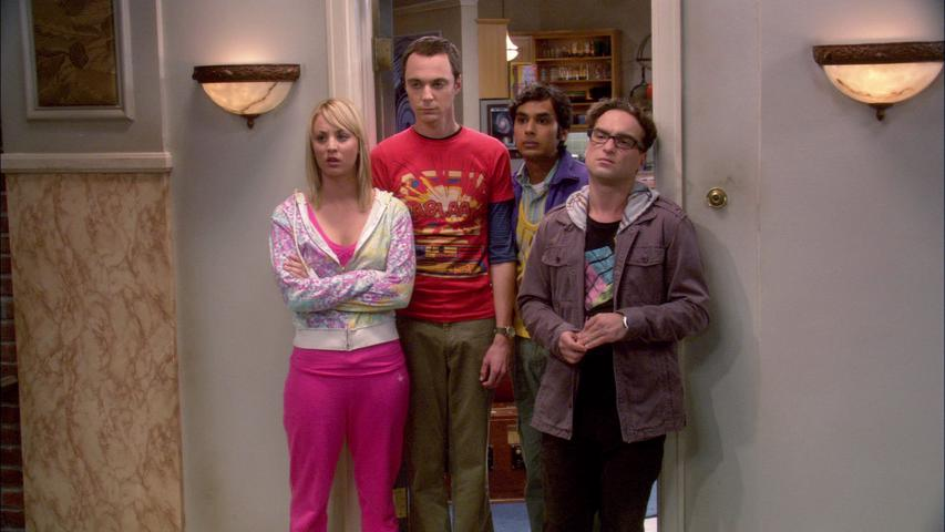 Big bang Theory Vector netflix Season 9 Episode 8 Subtitles